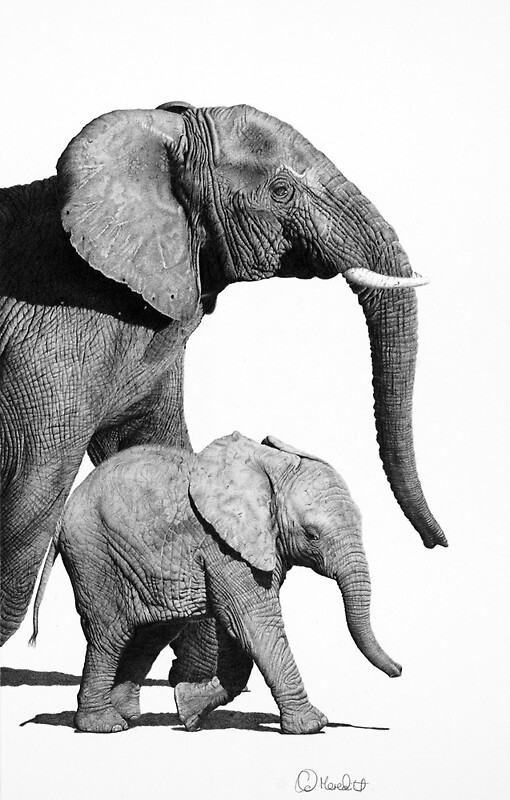 Together-elephant and calf by clive meredith