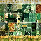 Iowa Quilt by Peggy Eichenberger