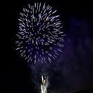 Культура: В честь Дня Независимости в Житомире проведут фейерверк