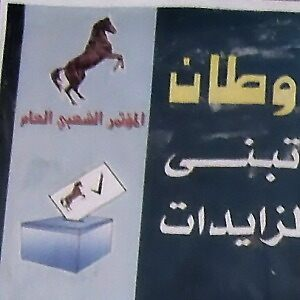 Horse, ballot box and checkmark on poster