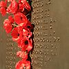 'Canberra: Roll Of Honour at the National War Memorial 002' Top Ten in A Place To Call Home challenge IN HONOR OF.....