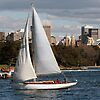 'Sydney Winter Sailing' featured in A Place To Call Home