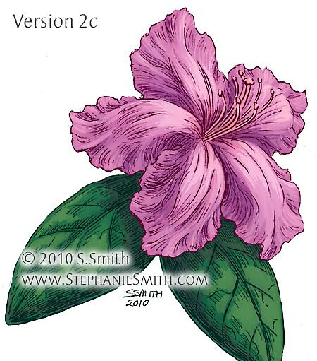 28+ Collection of Azalea Flower Drawing | High quality ...