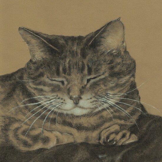 Sleeping Cat by Pam Humbargar