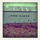 Polaroid: Good Earth by Jolie