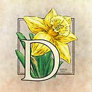 D is for Daffodil