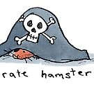 Pirate Hamster by Bethan Matthews