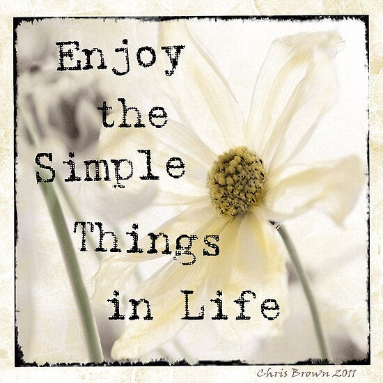 simple things in life Simple quotes from brainyquote, an extensive collection of quotations by famous authors, celebrities, and newsmakers i just find myself happy with the simple things appreciating the blessings god gave me.