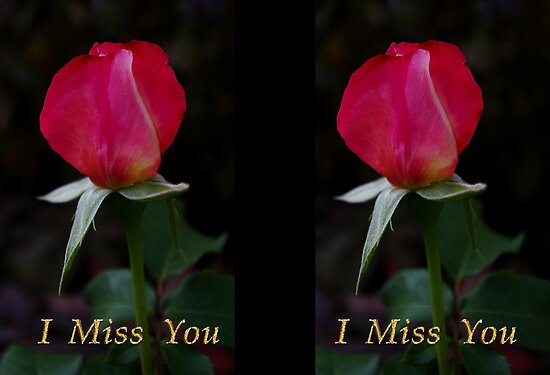 "rose bud ""i miss you"" card by dedmanshootn"