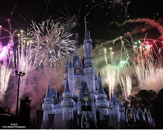 walt disney world castle fireworks. Cinderella Castle Disney World