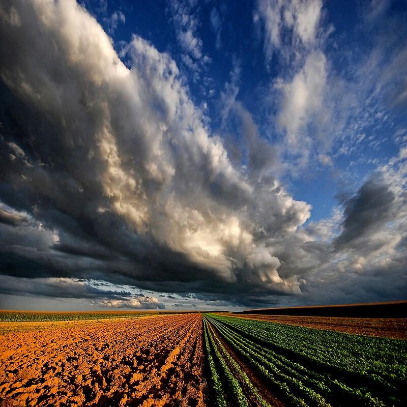Poder al Cielo por Philippe Sainte-Laudy