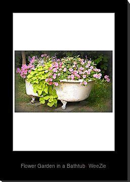 Astuces décos et rangements pour jardin ou plantess Work.7290836.1.mtd,375x360,b,s,Rmxvd2VyIEdhcmRlbiBpbiBhIEJhdGh0dWI%3D,ffffff