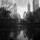 Central Park Reflections by jesscob23