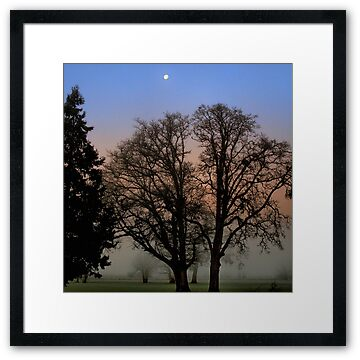 Sunrise and moon glow near Harrisburg, Oregon.  Picture taken by Charles Harkins