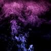 purpleraptorart