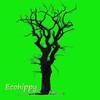 Ecohippy