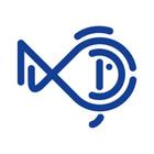 fishdesigns