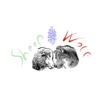 Sheepandwolf