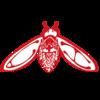 cicadahaus