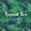 tropicaltina