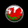 Welshsparkle