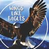 WingsLikeEagles