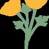 orangepoppppy