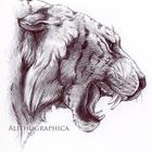 Alithographica