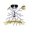 chytridoodles