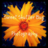 Sweet Shutter Bug Photography