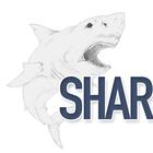 SharksEatMeat