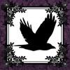 Raven Montoya
