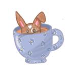 bunnyhopshop