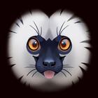 Mr-Lemur