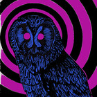 The Purple Owl Cult
