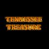 TNTreasure