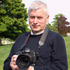 john Bellew
