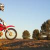 speedyhorse8