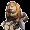 BeaverHeaven