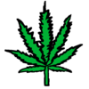 WeedWiki