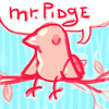Mr-Pidge