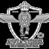 Aviators Design Studio