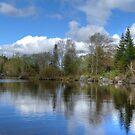 Sayon Lodge State Park by J Jennelle