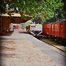 Train by Shara