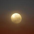 Autumn Moon by Melanie Roberts