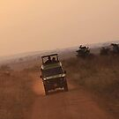 Uganda savanna by Ingrid *