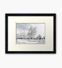 Hugged by snow (BW) Framed Print