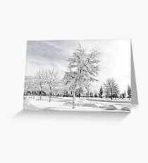 Hugged by snow (BW) Greeting Card