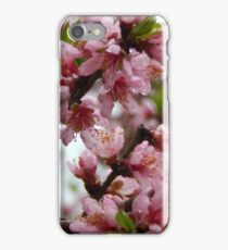 Ode to Spring - Please view larger iPhone Case/Skin