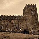 St Munna's Church. Taghmon,  Westmeath Ireland. by Finbarr Reilly